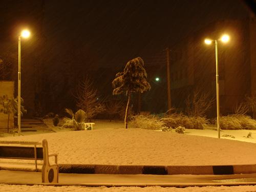 برف نو!